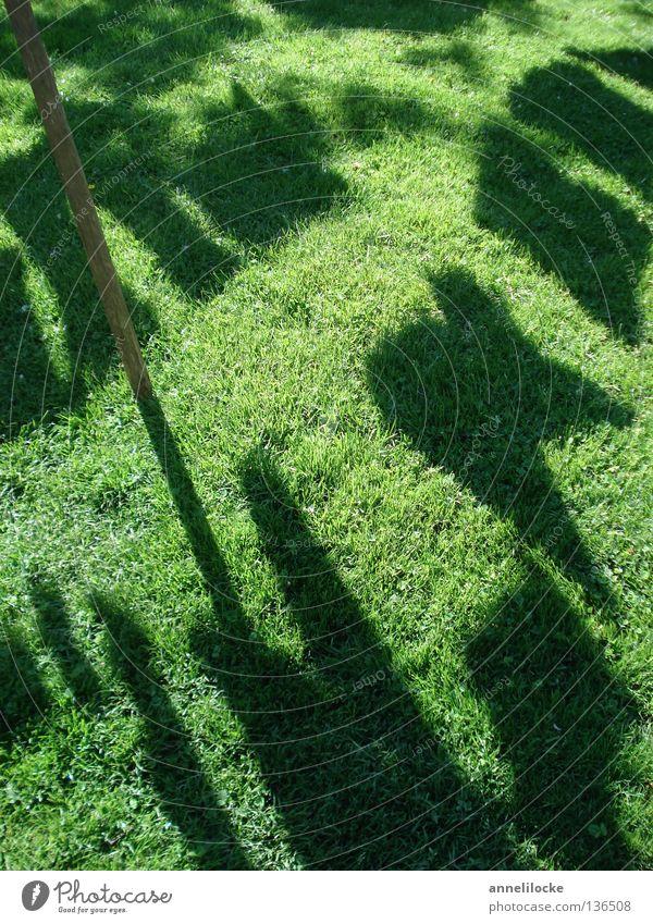 heute ist waschtag grün schwarz Wiese Gras Bekleidung Rasen Wäsche waschen Lichtspiel Haushalt aufhängen Schattenspiel Haushaltsführung Waschtag