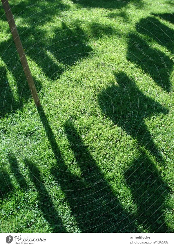 heute ist waschtag Wiese Gras grün schwarz Wäsche Bekleidung aufhängen Lichtspiel Schattenspiel Haushalt Rasen aufgehängt Kontrast grass meadow laundry rags