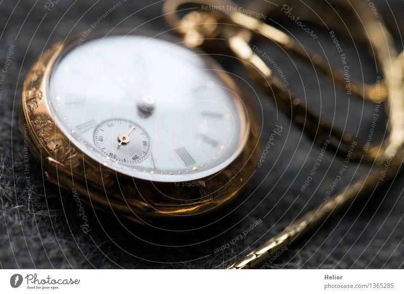 Pocket Watch 1 weiß schwarz gelb grau Zeit Metall Uhr Dekoration & Verzierung gold Glas Dinge Gold Vergänglichkeit retro Zifferblatt Ziffern & Zahlen