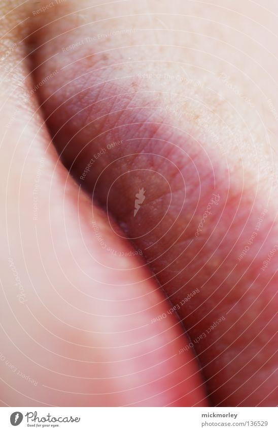 Die Linie des guten Geschmacks Lippen zart rosa rot Mundwinkel Pore Wasserrinne Makroaufnahme Nahaufnahme Haut lips kirschrot hauch Ecke mick morley mickmorley
