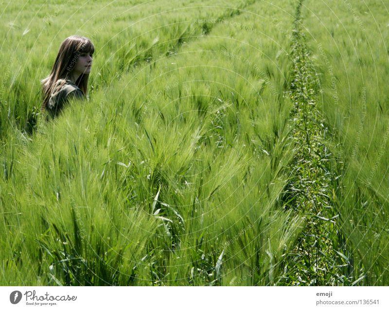 klein Frau Mensch Kind Jugendliche Mädchen schön grün Sommer ruhig Wolken Wiese springen Spielen Frühling Freiheit Glück