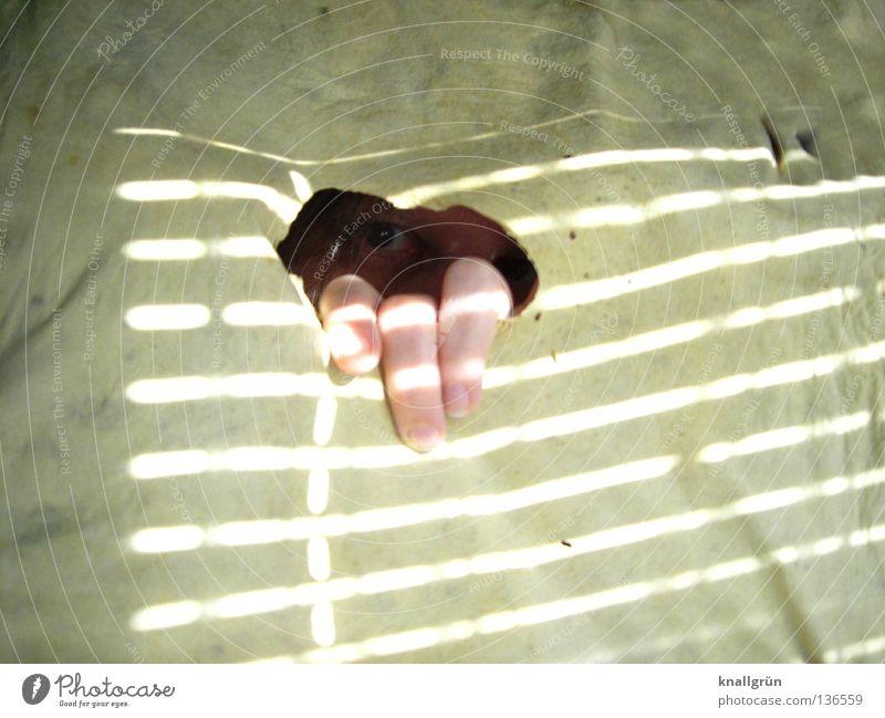 My shammy and me Frau Hand Auge dunkel hell Finger offen kaputt Streifen obskur Falte verstecken Loch Leder Richtung rückwärts