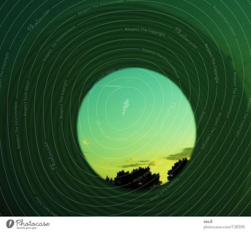 tunnelblick Himmel Baum Sonne Wolken Kreis Ordnung rund Tunnel obskur eng Baumkrone Verlauf Einschränkung Tunnelblick