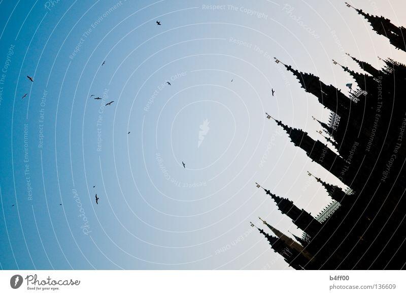 sightseeingsilhouette blau ruhig schwarz Gebäude Vogel fliegen groß verrückt Macht bedrohlich Bauwerk London England Politik & Staat Sightseeing