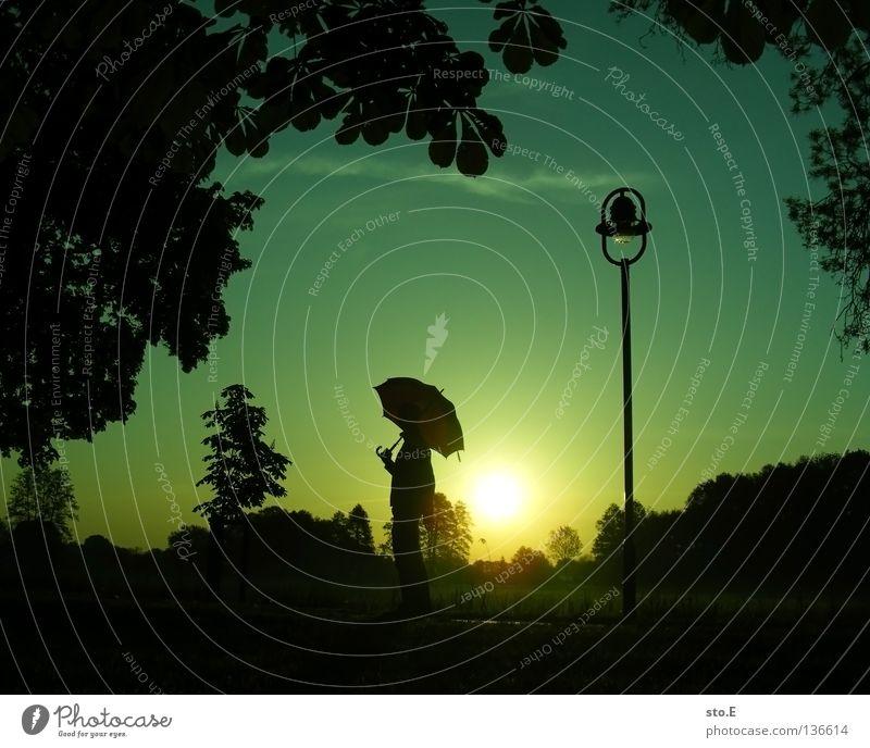 300 | early morning | umbrella Kerl Mann maskulin Jugendliche Stimmung Körperhaltung Lampe Laterne Laternenpfahl Wiese Feld Ferne Sonnenaufgang Morgen Baum