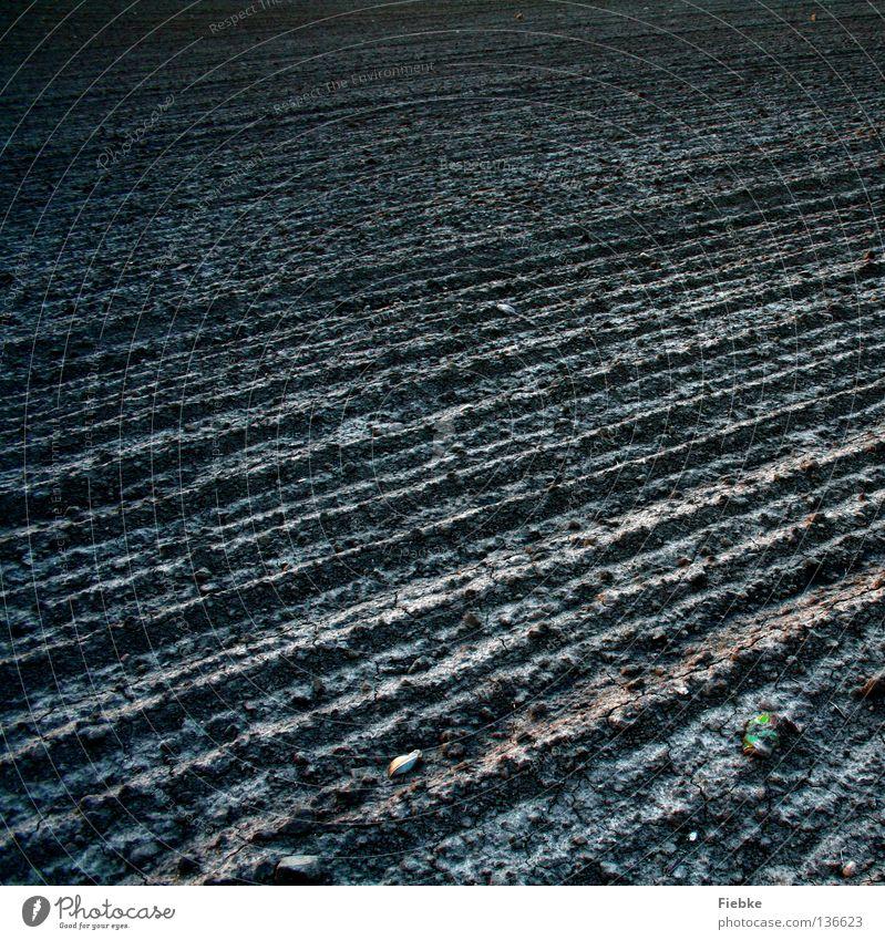 Over empty fields of nothingness Pflanze ruhig Einsamkeit Ferne dunkel grau Stein Denken Sand Landschaft Linie braun Feld Lebensmittel Erde