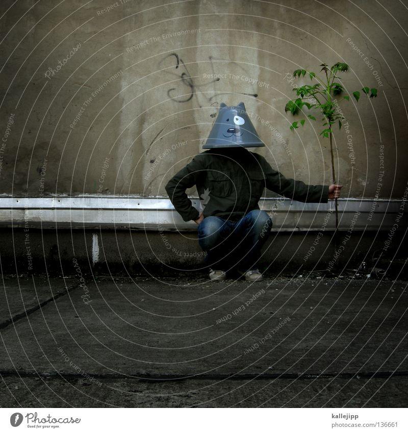 katzenbaum Katze Mensch Mann Baum Pflanze Freude Tier ruhig Haus Graffiti Wand lachen Kopf Mauer Energiewirtschaft Elektrizität