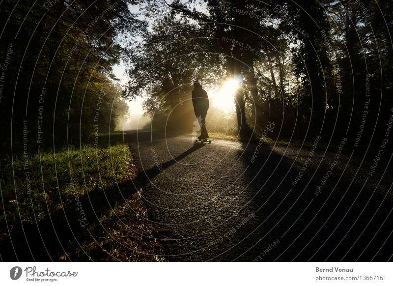 Alter ... Mensch maskulin 1 Verkehrswege Straße Gefühle Stimmung Skateboard fahren genießen rollen Sport Herbst strahlend Asphalt Schatten schön Farbfoto