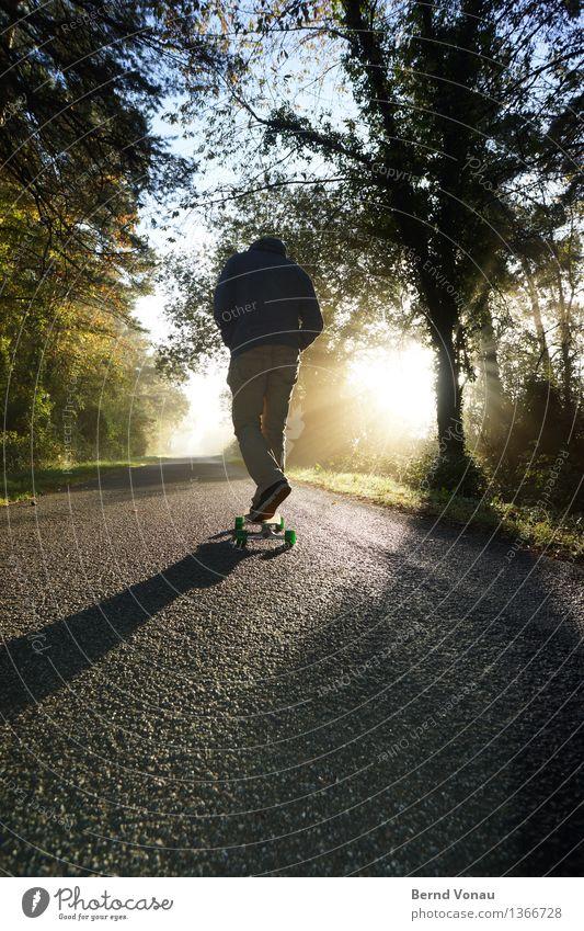 brötchen holen Sport Fitness Sport-Training Mensch maskulin Mann Erwachsene 1 45-60 Jahre Verkehr hell Skateboard schön Herbst Kapuze Asphalt Baum Baumstamm