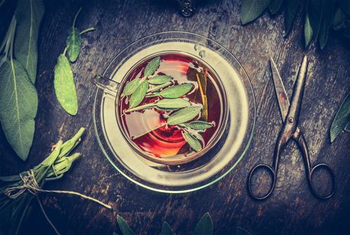Kräutertee mit Salbei Gesunde Ernährung Erholung Leben Stil Design Wohnung Häusliches Leben Tisch Kräuter & Gewürze Getränk Duft Tee Tasse Teller