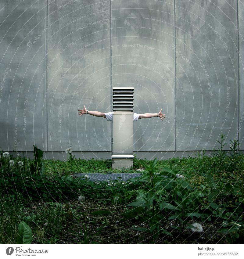designervogelscheuche Mensch Mann grün Gesicht Wiese Stil Gras Garten grau Mauer Luft Kunst Architektur lustig Arme Beton