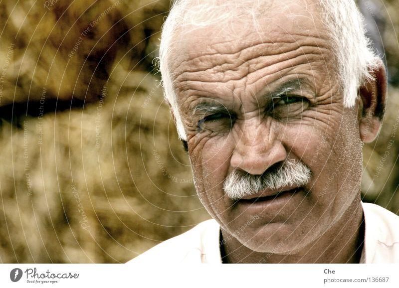 Der weiseste Mensch Pakistans Weisheit klug grauhaarig weiß Kopf stechend durchdringend fixieren Erfahrung kompetent Mann Großvater Oberlippenbart Stirn Asien