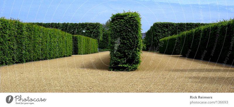 Der richtige Weg Hannover Herrenhausen-Stöcken Park Kunst Romantik Stadtleben Niedersachsen Kultur Wolken Abzweigung Garten Großer Garten Wege & Pfade Natur