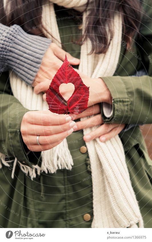 Herbst Mensch Frau Mann Hand Blatt Erwachsene Liebe Gefühle feminin Glück Paar Zusammensein maskulin Arme Romantik