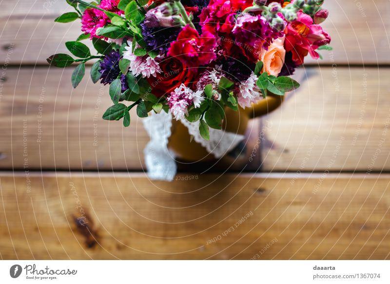 Blumen-Stimmung Lifestyle elegant Stil Design Freude Leben harmonisch Freizeit & Hobby Ferien & Urlaub & Reisen Ausflug Abenteuer Freiheit Sommer Traumhaus