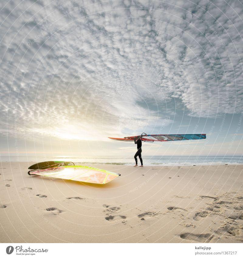 westküste Lifestyle Freizeit & Hobby Sport Reitsport Mensch Mann Erwachsene 1 18-30 Jahre Jugendliche Windsurfer Windsurfing Neoprenanzug Wasser Meer Küste