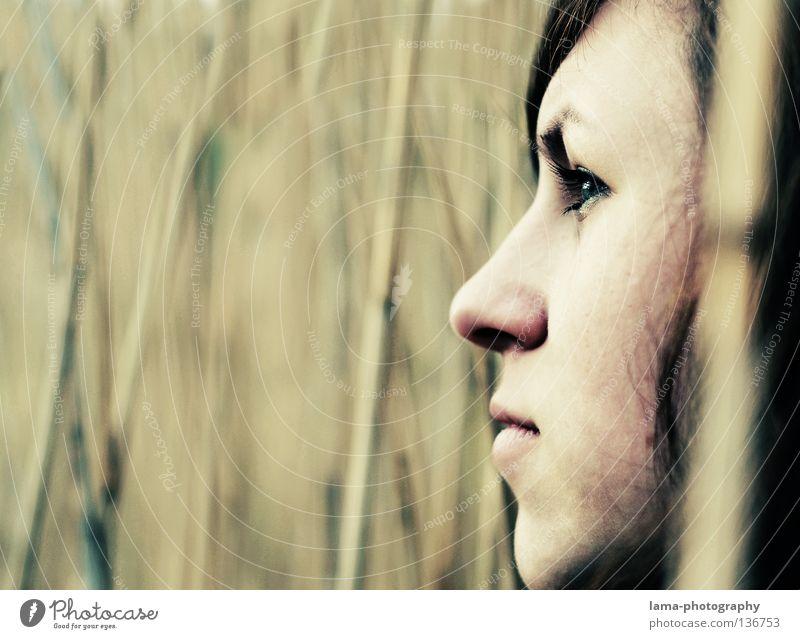 Zuversicht Frau schön Einsamkeit feminin Gras Wege & Pfade Küste grau Traurigkeit See Erde Denken träumen Perspektive trist Sicherheit