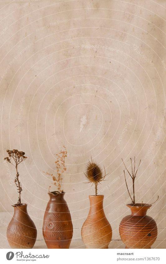 Retro Vase DDR retro getrocknet Blume Reihe Körper Figur dick Übergewicht dünn schmal Distel braun shabby altehrwürdig Hintergrundbild karte altmodisch veraltet