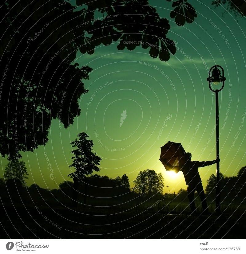 early morning | umbrella pt.2 Mensch Mann Natur Jugendliche Himmel Baum Sonne grün ruhig Blatt schwarz Wolken Ferne Farbe Lampe Wiese