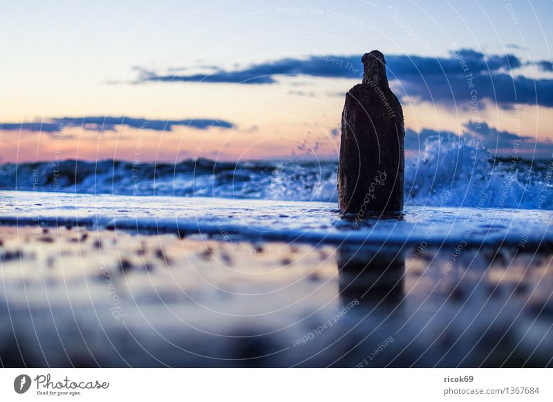 Ostseeküste Erholung Ferien & Urlaub & Reisen Strand Meer Natur Landschaft Wasser Wolken Küste alt Romantik Idylle ruhig Tourismus Buhne Himmel Sonnenuntergang