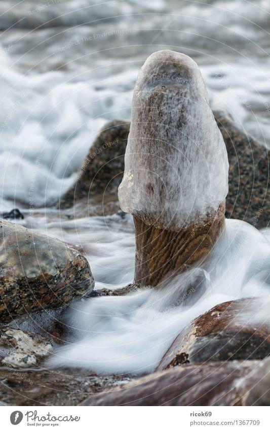 Ostseeküste Erholung Ferien & Urlaub & Reisen Strand Meer Winter Natur Landschaft Wasser Felsen Küste Stein alt kalt Idylle Buhne Steinblock Eis Himmel