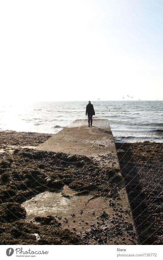 vast ocean Meer Küste Strand Wasser Ferne Sonne