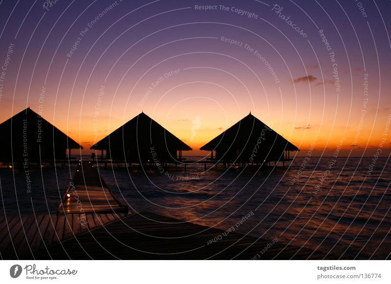 UPWARDS Sonne Meer Sommer Strand Ferien & Urlaub & Reisen Erholung Küste Asien Pfeil Richtung Steg Indien aufwärts Malediven Verlauf Sonnenuntergang