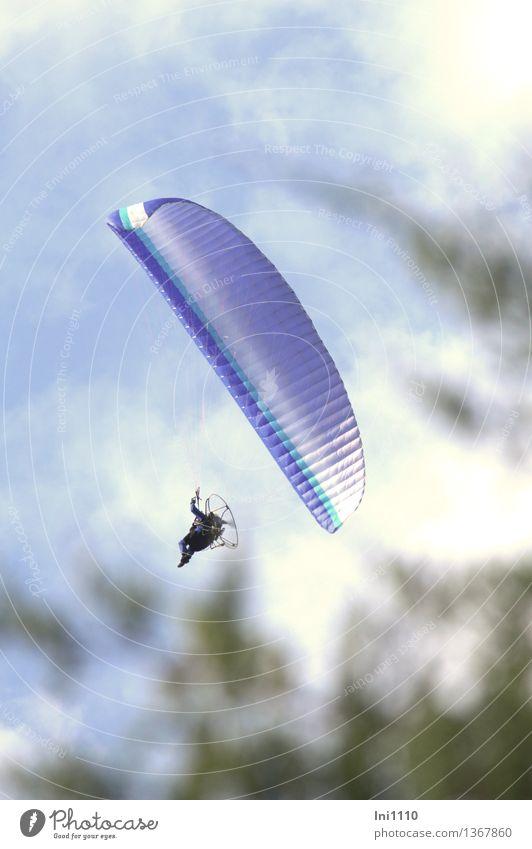 über den Baumwipfeln Ferien & Urlaub & Reisen blau grün weiß Freude schwarz Bewegung Glück außergewöhnlich Freiheit fliegen Freizeit & Hobby elegant Luftverkehr frei genießen