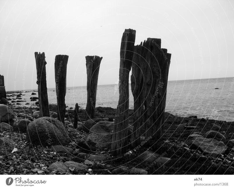 Fünf weiß Meer schwarz Holz Küste Ostsee