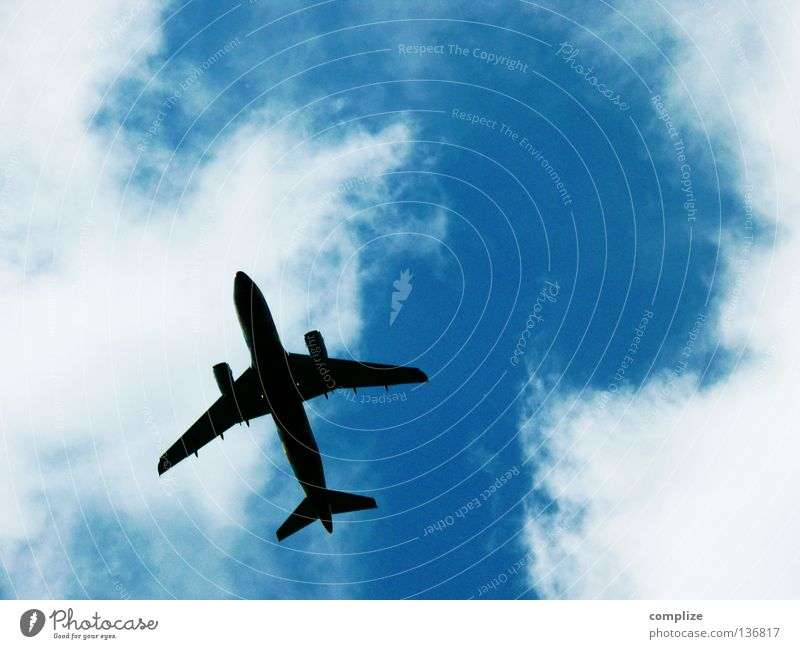 Überflieger Flugzeug Wolken Abdeckung Ferien & Urlaub & Reisen fliegen Himmel himmelblau Sommerurlaub Fluglotse Abheben Ankunft Beginn Triebwerke Luftverkehr
