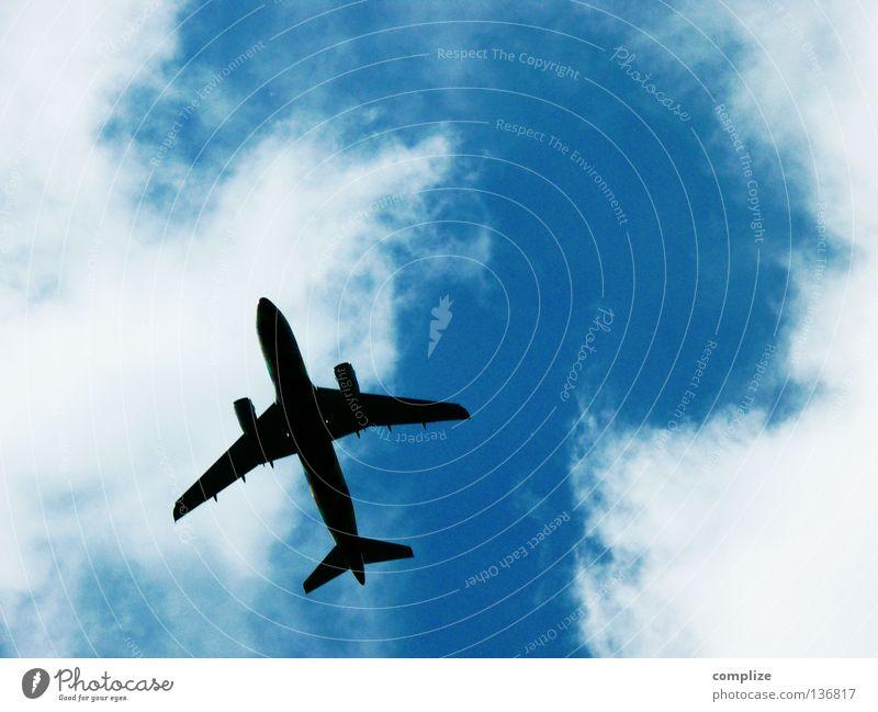 Überflieger Himmel Ferien & Urlaub & Reisen Wolken Flugzeug fliegen Beginn hoch Luftverkehr Technik & Technologie Flügel Flughafen Richtung Flugzeuglandung Abheben Sommerurlaub Ankunft