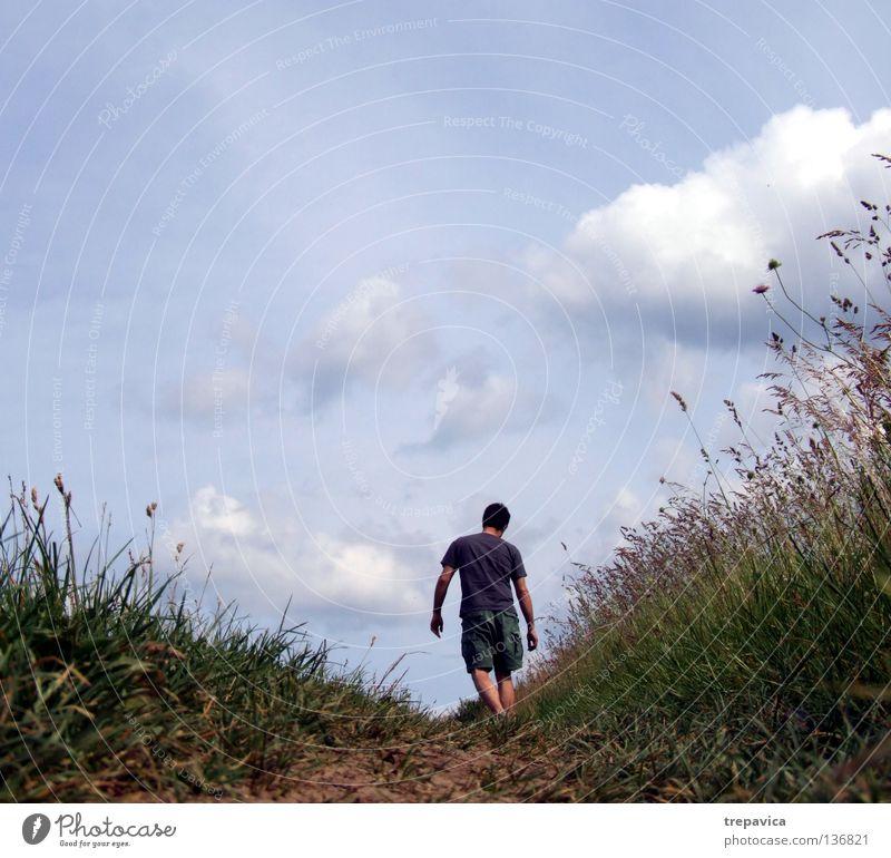 wochenende Mann Himmel Blume blau Pflanze Sommer Ferien & Urlaub & Reisen ruhig Wolken Einsamkeit Leben Wiese Gras Wärme Landschaft Zufriedenheit