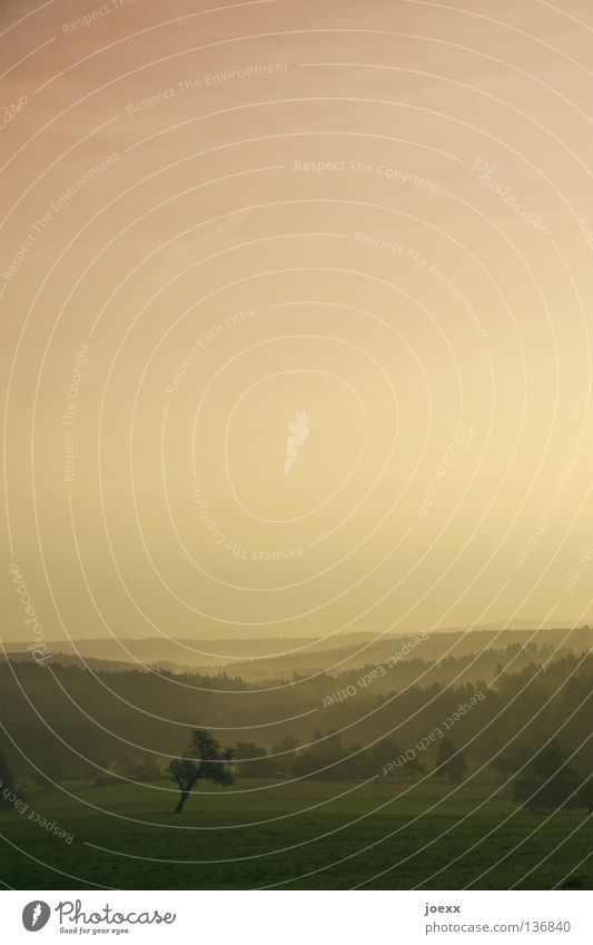 Morgenrot - ein Photo droht. Himmel Baum ruhig Wald dunkel Erholung Herbst Berge u. Gebirge Traurigkeit Wärme Landschaft Stimmung Angst Nebel Ordnung Romantik