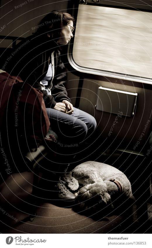 hin, fort oder nirgendwo Frau Ferien & Urlaub & Reisen Einsamkeit Bewegung träumen Hund Traurigkeit Verkehr Eisenbahn Trauer Aussicht Ziel Langeweile Bus Säugetier kommen
