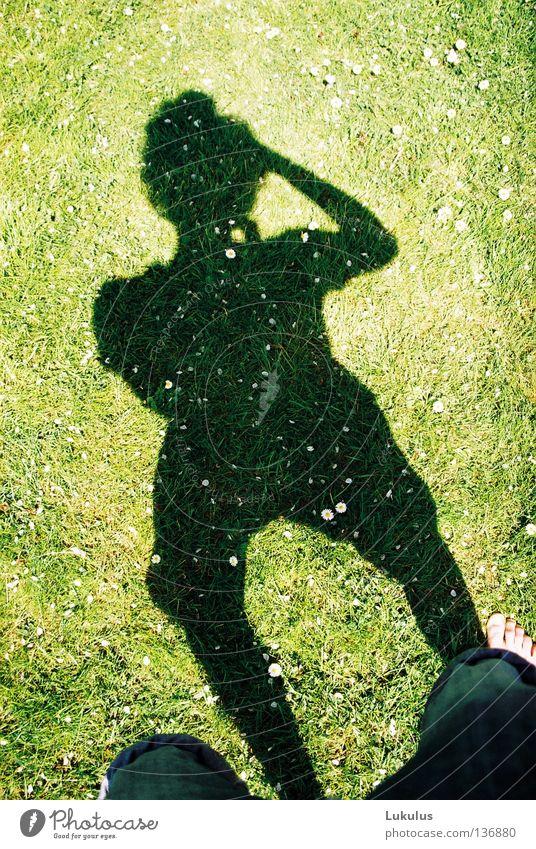 Schattenjournalist Sommer Gras Freiheit Zufriedenheit hell Wind wach