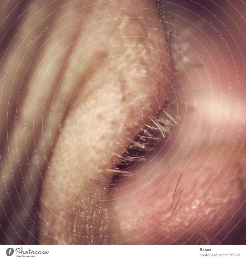 Body Parts VI Mensch Mann alt Haare & Frisuren dreckig maskulin Ohr hören Druck Ton rechnen Sinnesorgane Geräusch Telekommunikation wahrnehmen Gehörsinn