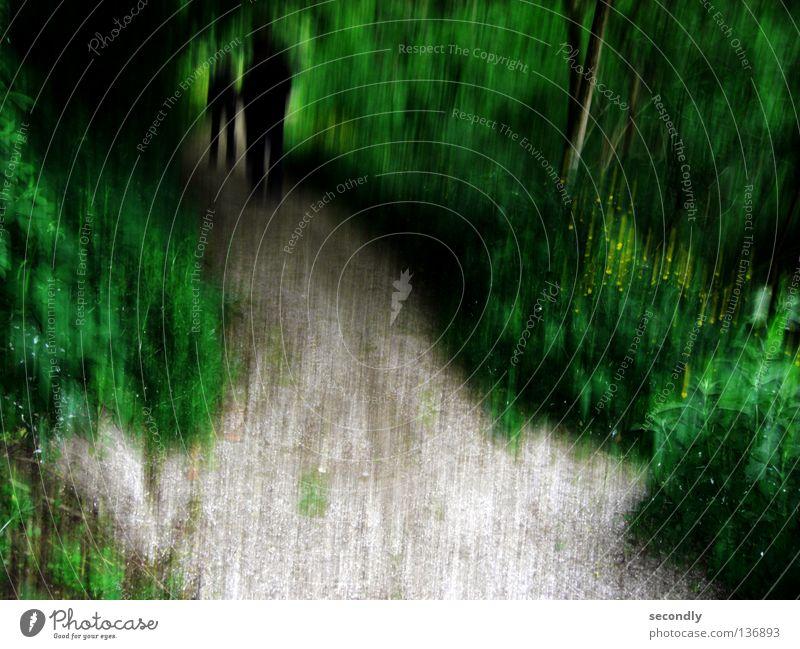 shady umbrage Wald grün schwarz dunkel Schattendasein Schattenseite Vergänglichkeit Angst Panik Wege & Pfade Tod ende des tunnels Unschärfe