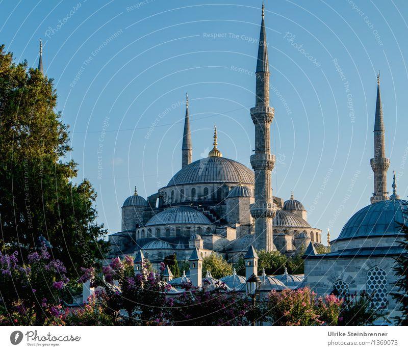 Minarette 3 Ferien & Urlaub & Reisen Tourismus Sightseeing Städtereise Istanbul Türkei Bauwerk Gebäude Architektur Moschee Turm Sehenswürdigkeit Stein Zeichen