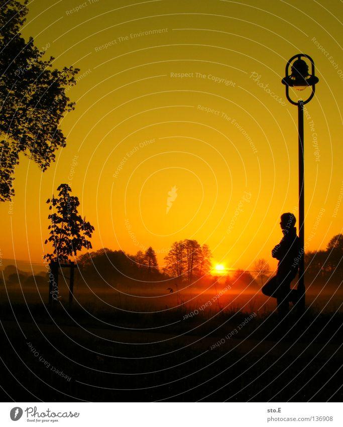 early morning | frühaufsteher Kerl Mann maskulin Jugendliche Stimmung Körperhaltung Lampe Laterne Laternenpfahl Wiese Feld Ferne Sonnenaufgang Morgen Baum