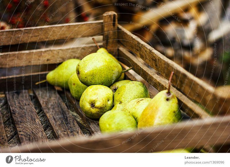 Birnen II Natur Pflanze Sommer Gesunde Ernährung Umwelt Herbst Essen Garten Frucht Dekoration & Verzierung frisch authentisch Idee Schönes Wetter lecker