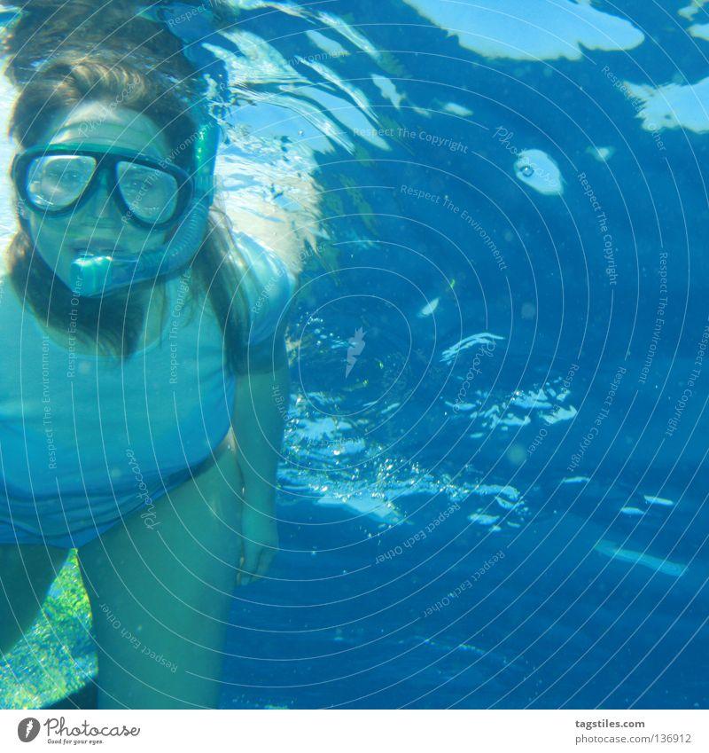 ' GOT YOU FOCUSED Frau Wasser Meer Sommer Ferien & Urlaub & Reisen Erholung Tourismus Freizeit & Hobby tauchen Konzentration Indien Malediven Wassersport