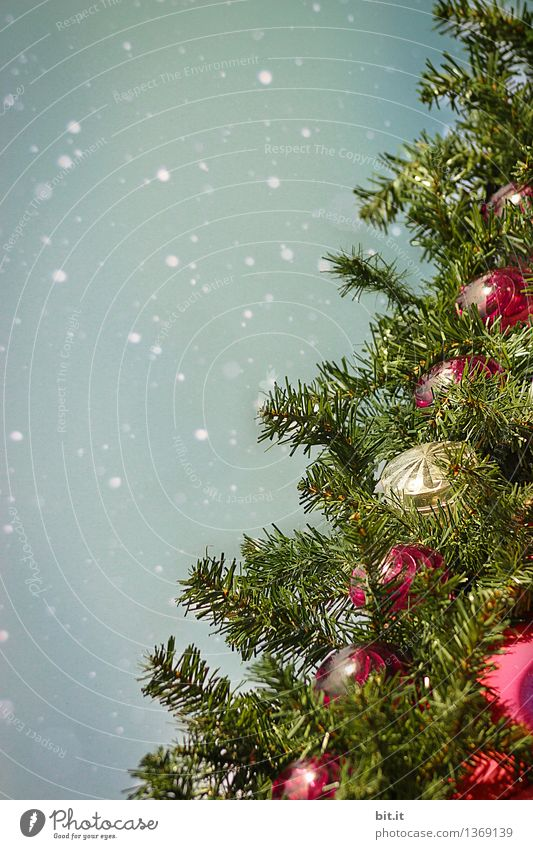 oh Tannenbaum... Feste & Feiern Weihnachten & Advent Kitsch Weihnachtsbaum Weihnachtsdekoration Weihnachtsmarkt Christbaumkugel Schnee Schneefall Schneeflocke