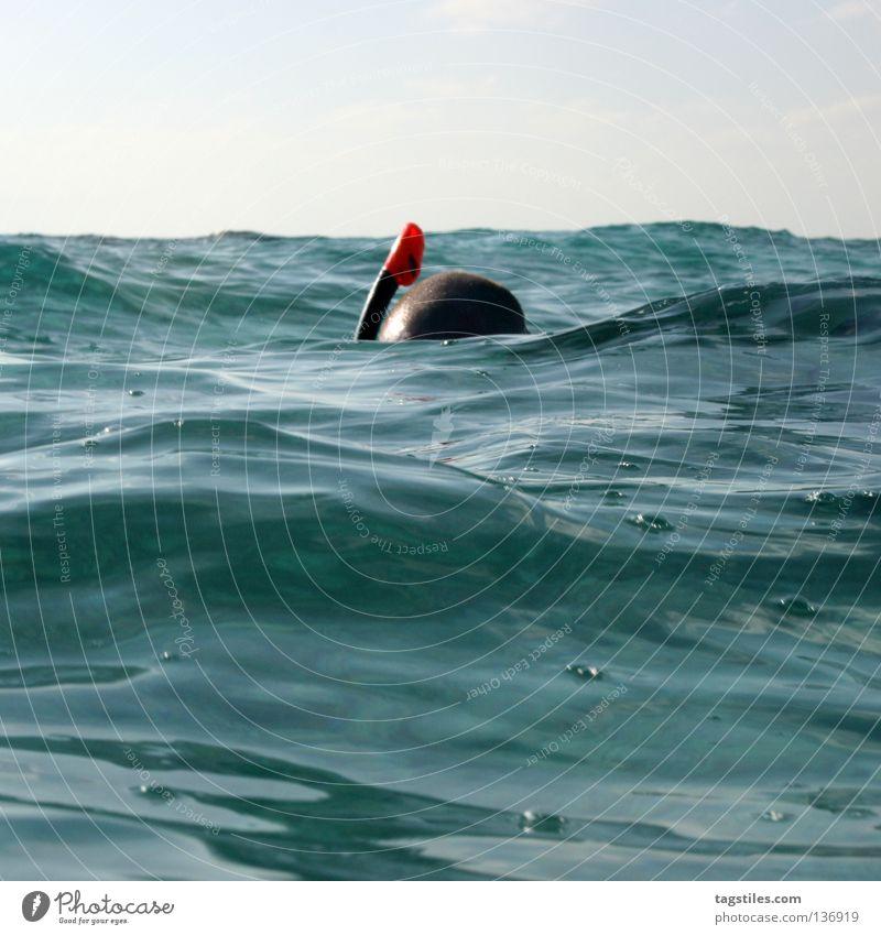 MR. SNORKEL Mann Wasser Meer blau Sommer Ferien & Urlaub & Reisen oben Kopf Wellen gehen Boden Freizeit & Hobby tauchen Dinge entdecken Indien