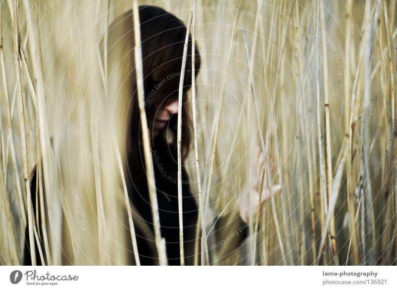 Find your way... Schilfrohr See verdeckt Urwald Unschärfe unklar Gedanke Denken verloren verlieren Suche Wege & Pfade untergehen Frau Trauer Liebeskummer