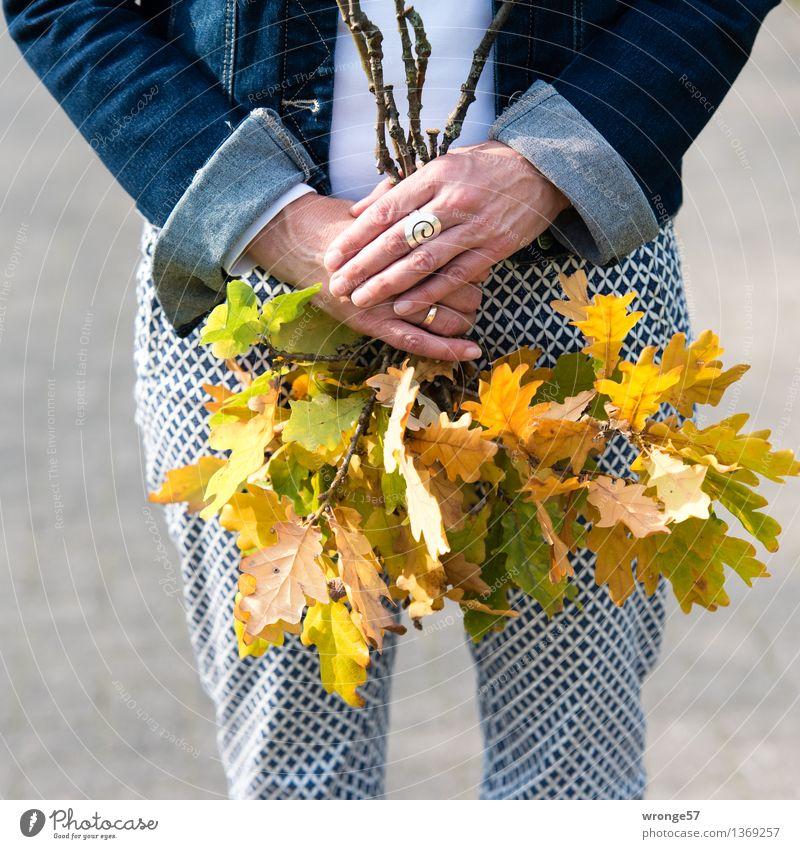Blättersammlung Mensch Frau blau weiß Hand Blatt Erwachsene gelb Herbst feminin Freizeit & Hobby 45-60 Jahre Spaziergang Weiblicher Senior Hose Jacke