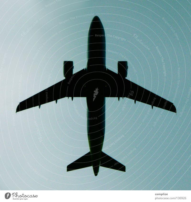 Piktogramm - Flughafen Himmel Ferien & Urlaub & Reisen Wolken Flugzeug fliegen Beginn hoch Luftverkehr Flügel Richtung Symbole & Metaphern Flugzeuglandung