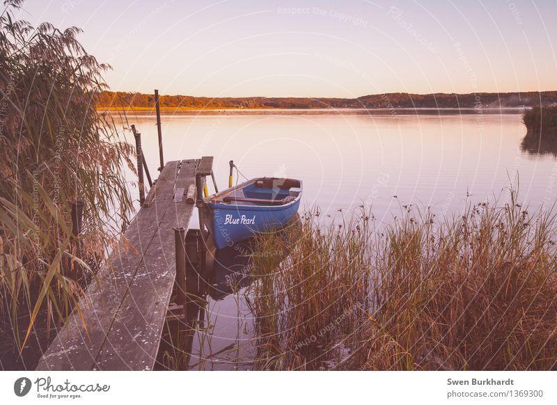 Blue Pearl...fast vergessen Natur Ferien & Urlaub & Reisen blau Sommer Sonne Erholung Landschaft ruhig Umwelt Gras Küste See Tourismus wandern Sträucher Ausflug