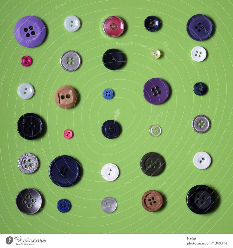 Super Stillleben | Knöppe grün weiß rot schwarz klein grau außergewöhnlich braun liegen Ordnung einzigartig rund violett Sammlung Knöpfe Ordnungsliebe