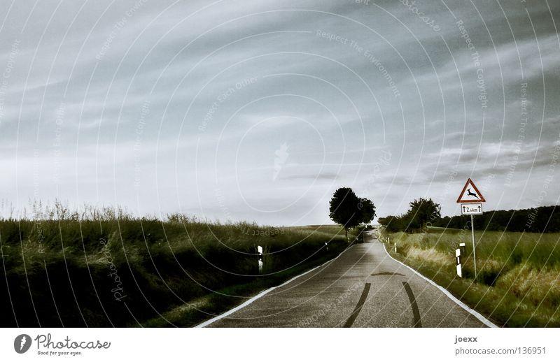 Zu schnell … stoppen Asphalt Bremsspur eng Fahrbahn Feld gefährlich Geschwindigkeit Gummi Ölfleck Reh Reifenspuren Schrecken Spuren Streifen Tier unaufmerksam