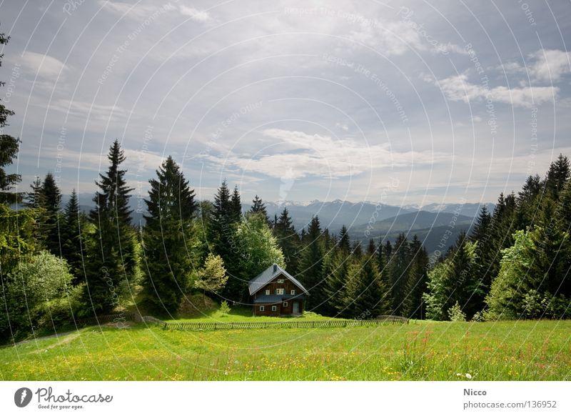 Bergweltpanoramaaussicht Himmel Natur Ferien & Urlaub & Reisen Sommer Baum Blume Wolken Haus Wald Berge u. Gebirge Frühling Wiese Schnee Freiheit Felsen